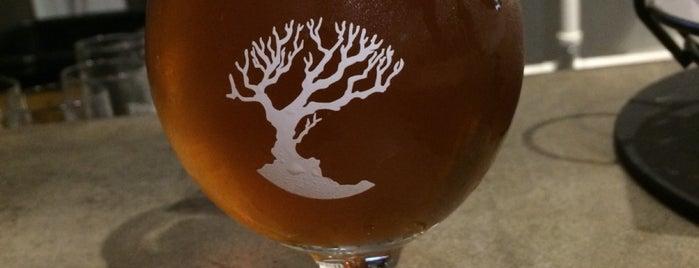 MadTree Brewing is one of Posti che sono piaciuti a Andy.