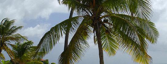 Beach Destinations Around the World