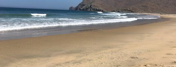 Playa de Las Palmas is one of Todos Santos.