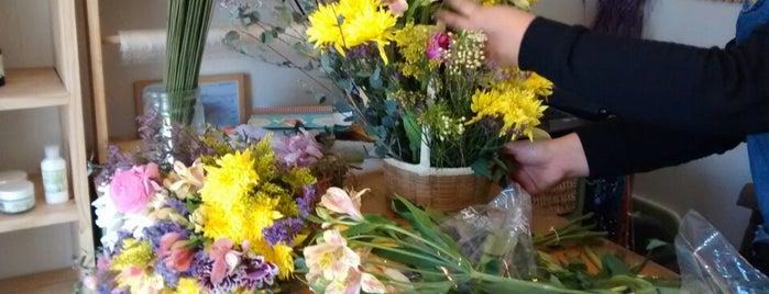 Flor de Cilantro is one of Favs in the hood.