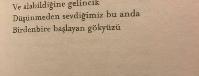 Abant Yeşil Ev / Rüya Ev is one of bolu.
