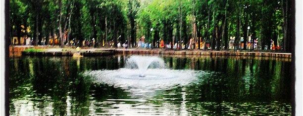 Озеро is one of Locais curtidos por @.