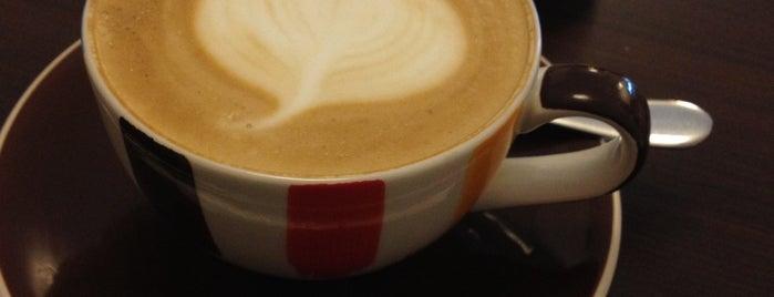 Black dog café is one of ʕ •ᴥ•ʔ II.