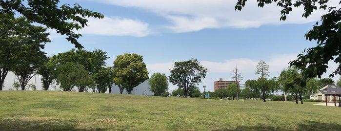 Ogunohara Park is one of สถานที่ที่ Masahiro ถูกใจ.