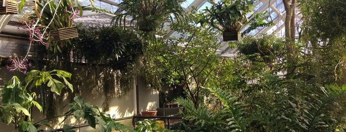 Brooklyn Botanic Garden is one of Brooklyn, New York.