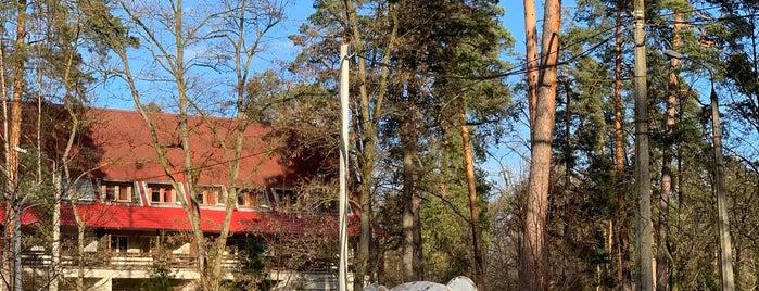 Пологовий будинок «Лелека» is one of Kinoidaさんの保存済みスポット.