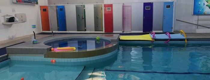 ROMA CLUB Aquatic & Fitness is one of Tempat yang Disukai Gabo.