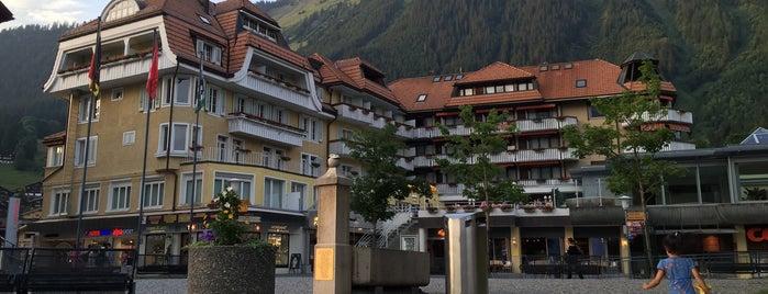 Hotel Silberhorn is one of Hotels 2.