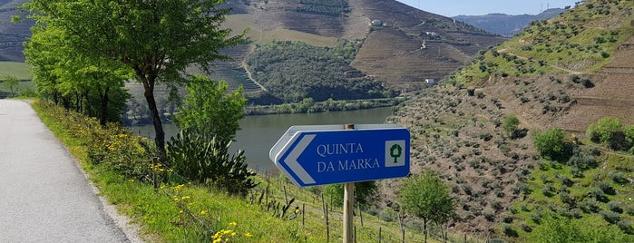 Quinta da Marka is one of Porto e região.