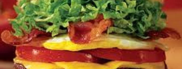 Red Robin Gourmet Burgers and Brews is one of FOOD in Dallas-Ft Worth Metroplex.