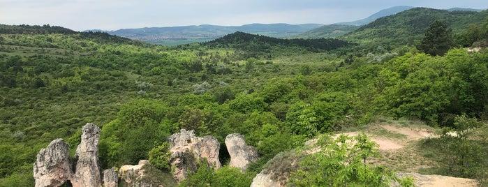 Kevély-nyereg is one of Budai hegység/Pilis.