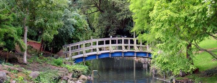 Риджентс-парк is one of Закладки IZI.travel.