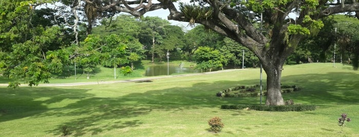 Palmiste Park is one of Rs Trinidad.