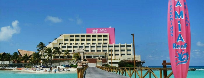 Mía Reef Hotel is one of Lieux qui ont plu à Rosa.