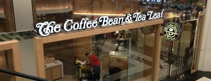 The Coffee Bean & Tea Leaf is one of Lieux qui ont plu à Stephen.