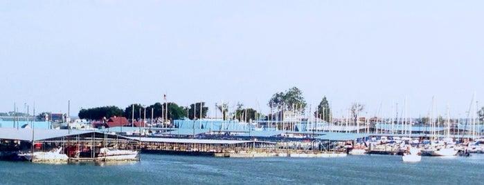 Bay View Marina is one of Jo : понравившиеся места.