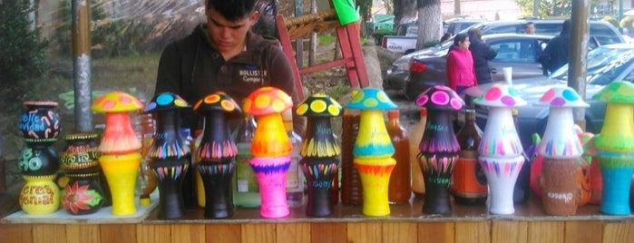 El Tunal Bebidas Magicas is one of Huasca, Hidalgo.