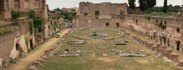 Stadio palatino is one of Mediterranean Trip.