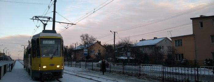 Лігумінка На Княгині Ольги is one of Lviv.