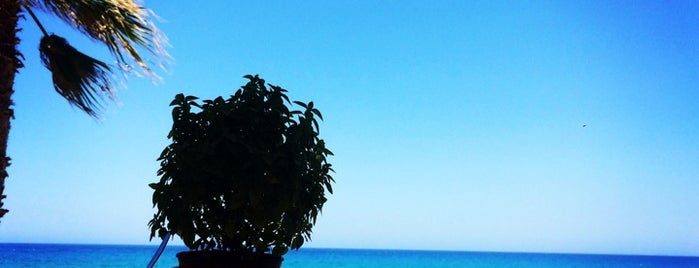Meltemi Beach is one of Lieux sauvegardés par Natalie.
