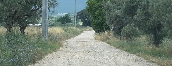 Gedelek is one of Tempat yang Disukai Erkan.