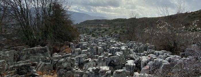 Πέτρινο Δάσος is one of Amazing Epirus.