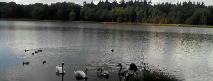 Zwarte Water is one of Tempat yang Disukai Iris.