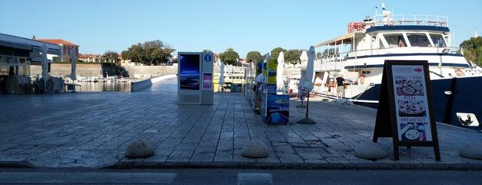 Caffe bar Ponte is one of Zadar, Croatia Places.