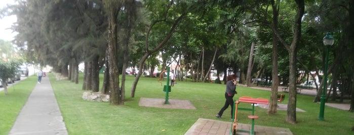 Parque El Palomar is one of Quiero ir.