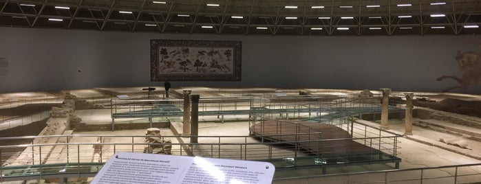 Haleplibahçe Mozaik Müzesi is one of Locais curtidos por Merve.