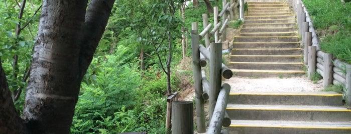 금호산공원 is one of Lieux qui ont plu à Seung-Hwan.