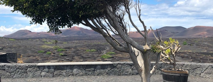 La Geria is one of Lanzarote, Spain.