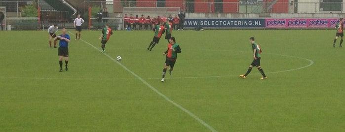 Amsterdamsche Football Club is one of สถานที่ที่ Niels ถูกใจ.
