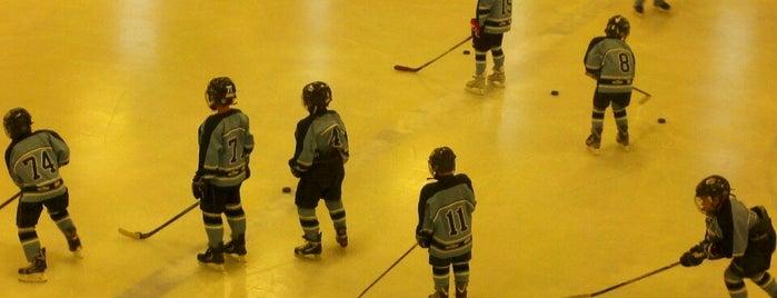 Maple Grove Ice Arena is one of Activities.