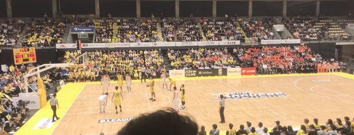 青山学院大学 体育館 is one of Aoyama Gakuin.