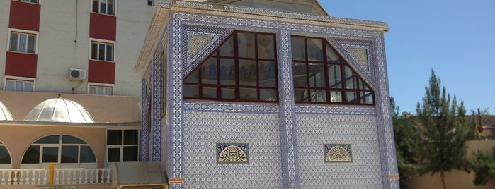 Hz. Nuh Türbesi ve Camii is one of Şırnak Cizre.