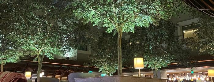 DoubleTree by Hilton Riyadh is one of Mohannad'ın Beğendiği Mekanlar.
