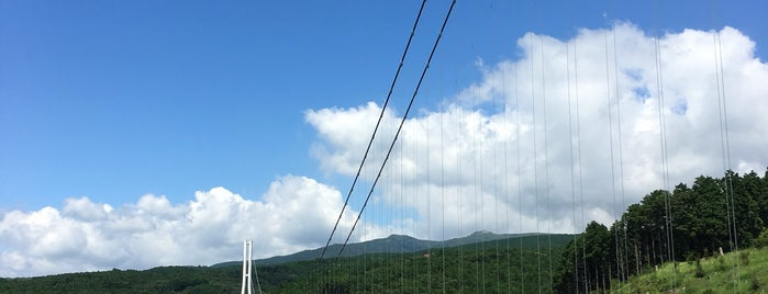 Mishima Skywalk is one of Japan/Other.