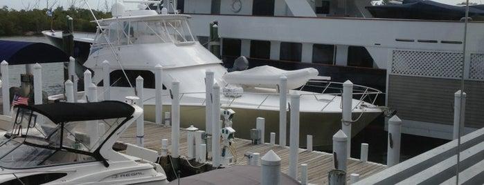 Miller's Dockside is one of Boca Grande ☀️🌴.