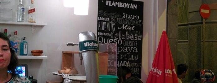 Flamboyán is one of Satna Cruz de Tenreife.
