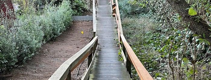 Harry St Stairway is one of Ariel : понравившиеся места.