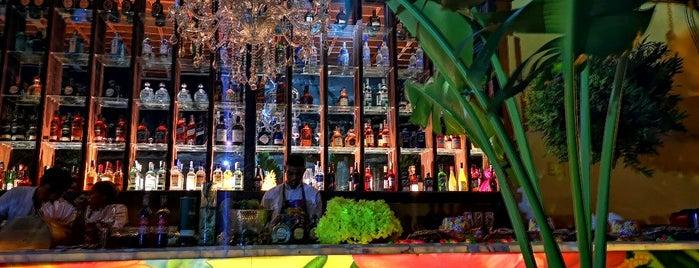Mardeleva is one of Cartagena.