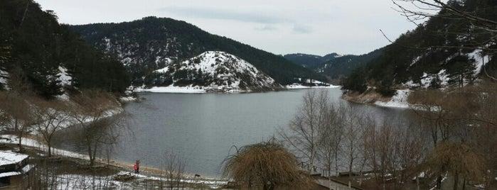 Sünnet gölü is one of Feyza'nın Beğendiği Mekanlar.