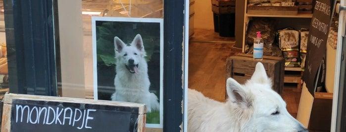 De Vergulde Hond is one of Amsterdam - Sips, sights & bites.