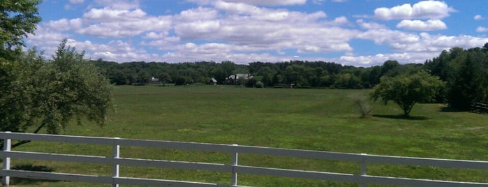 Old Westbury Polo Grounds is one of Long Island.