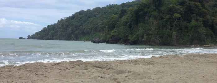 Grande Riviere Beach is one of Favorite Great Outdoors.