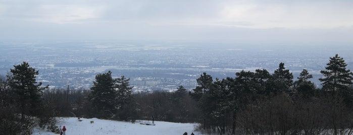 Hármashatárhegyi Kilátó - Guckler Károly kilátópont is one of Budai hegység/Pilis.