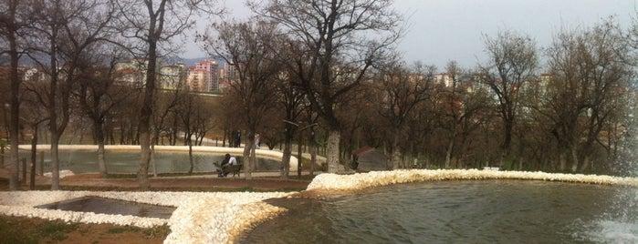 Koru Park is one of Orte, die Melih gefallen.