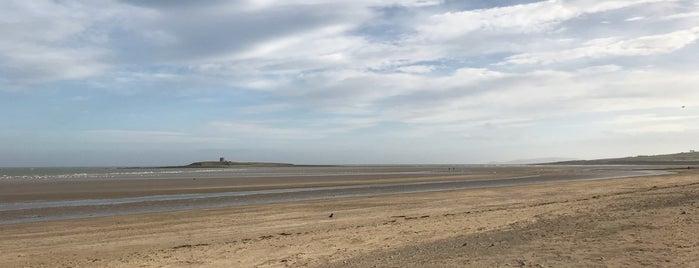 South Strand Beach is one of Locais salvos de Nicola.