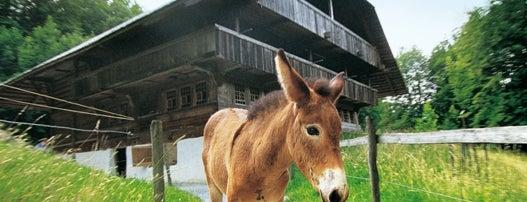 Ballenberg, Freilichtmuseum der Schweiz is one of สถานที่ที่ Oliver ถูกใจ.